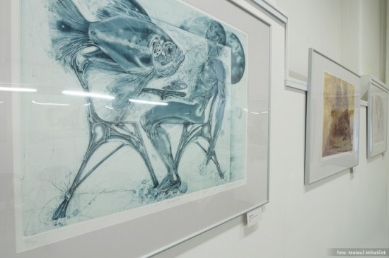 Karel Demel: Poezie v grafice