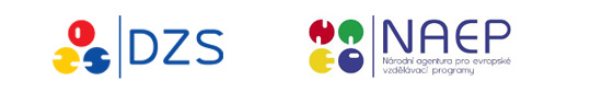 zds-naep-logo